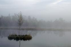 ráno na Chalupské slati