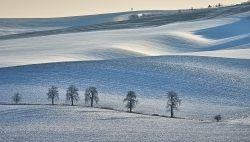 Jižní Morava