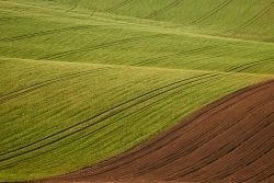 Krajina Jižní Morava