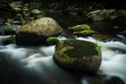 Šumava - Řeka Vydra