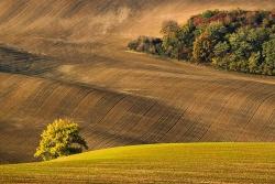 Krajina Jižní Moravy