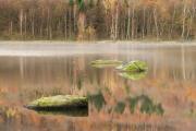 Šolcův rybník