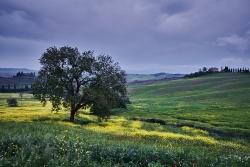 Toskánsko (Itálie)